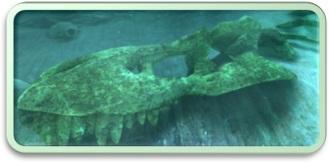 OCEANRIFT_Photo-2