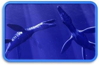 OCEANRIFT_Photo-3.jpg