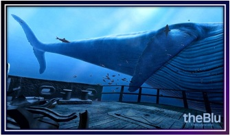 Transport-WeVR-TheBlue2-Image-5.jpg