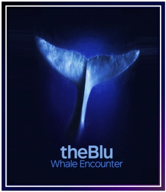 Transport-WeVR-TheBlueWhale